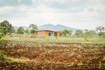 Econef Baobab House
