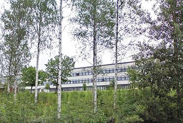 Skogsgatan school